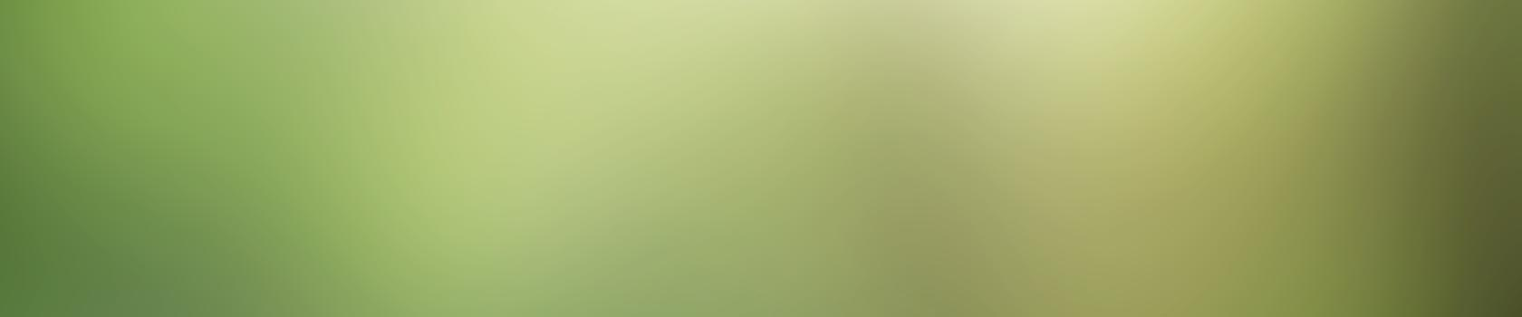 colibri-back