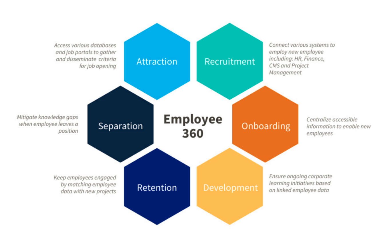 This image displays the different stages of the employee life cycle.